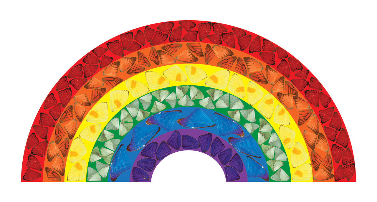 Butterfly Rainbow by Damien Hirst